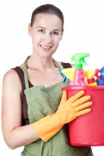 Alternative Cleaning Methods That Can Make Your House Cleaning In Highbury A Lot Easier