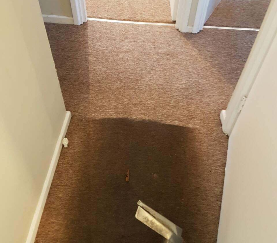 West London Carpet Cleaning