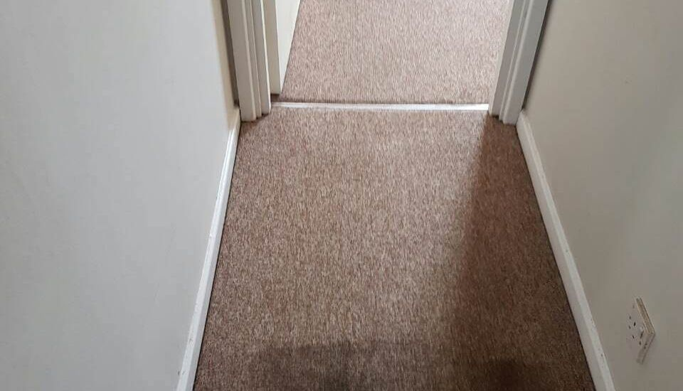 floor clean SW11 office carpet cleaning