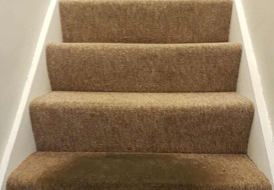 floor clean SE20 office carpet cleaning