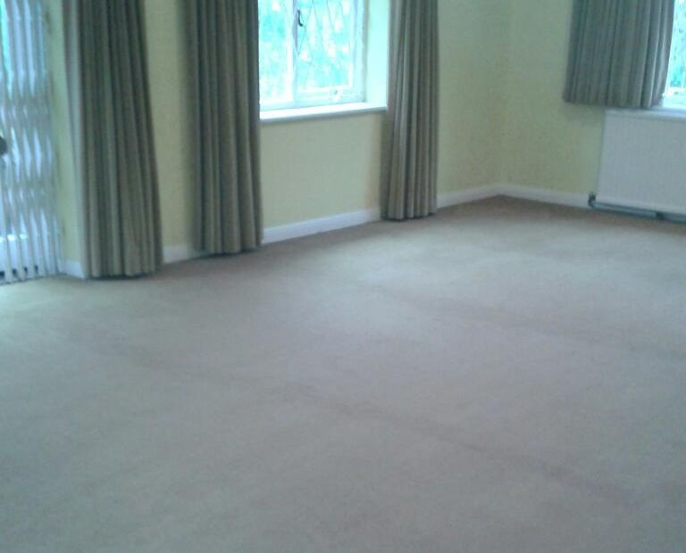 domestic carpet cleaning EN9