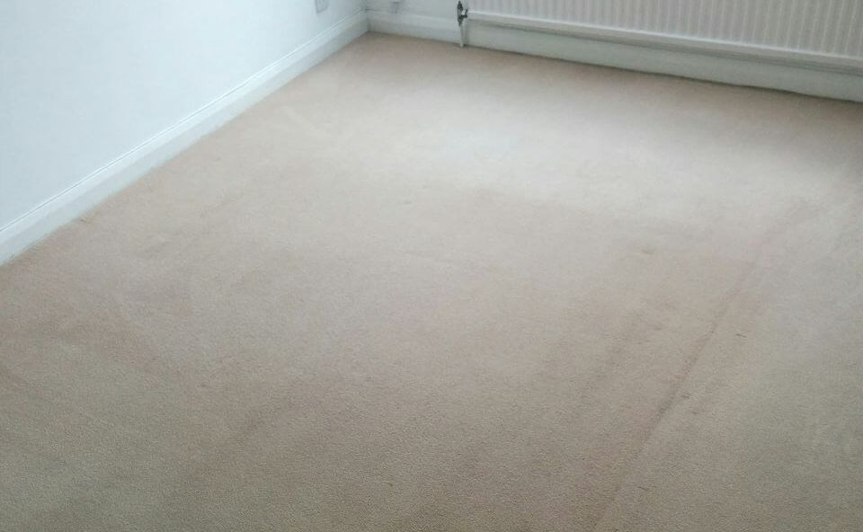 floor clean E1 office carpet cleaning