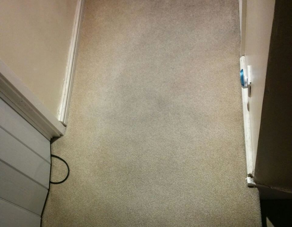 floor clean EN4 office carpet cleaning