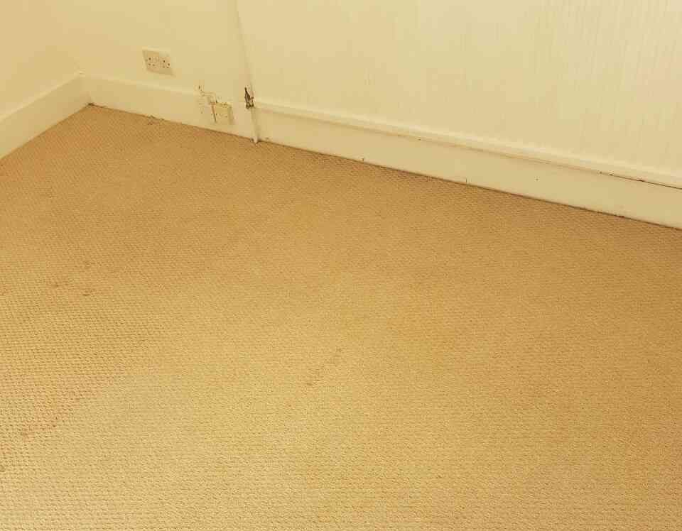 domestic carpet cleaning BR1