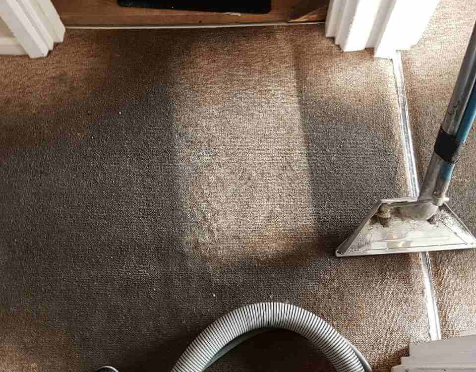 domestic carpet cleaning SE11
