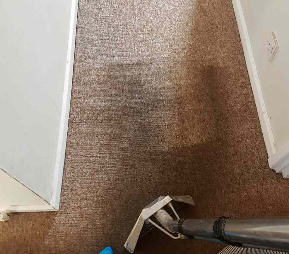 South Tottenham rugs cleaning N15