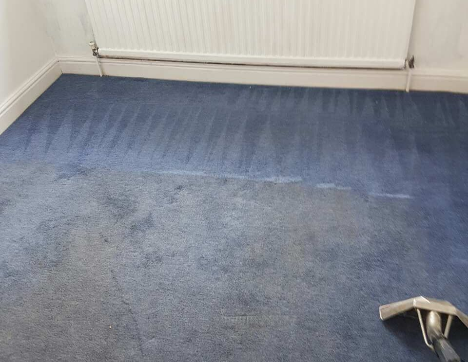 Tottenham rugs cleaning N17