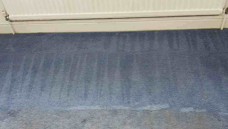 Harringay rugs cleaning N4