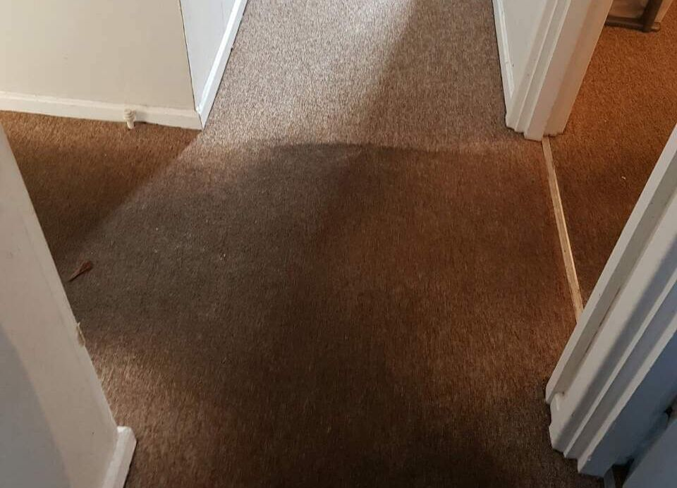 Feltham rugs cleaning TW13