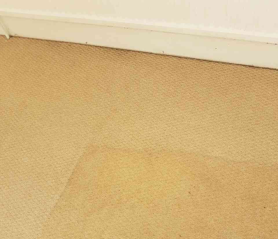 sofa cleaning in Ravenscourt Park fabric sofa cleaning