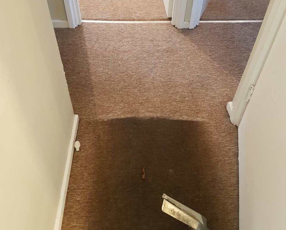 Muswell Hill furniture cleaning service N10